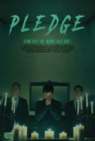 pledge-poster-1